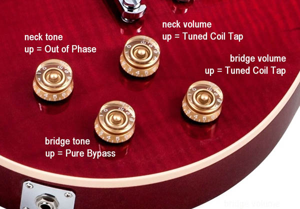 Les Paul Standard Controls