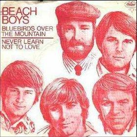 Beach Boys Bluebirds Over the Mountain/ Never Learn Not to Love