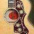 Gibson Five Star Dealer - Emmy Lou Harris L-200