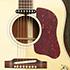 Gibson Five Star Dealer - Lennon J-160 E