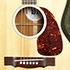Gibson Five Star Dealer - Nick Lucas Special