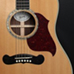 American Guitar Boutique - Songwriter Deluxe Studio