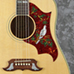 Eddie's Guitars - Gibson 5-Star Dealer - Dove