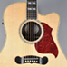 Gibson 5-Star Dealer - Grapevine Guitar Works - Songwriter Deluxe Studio EC