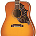 Gibson Five Star Dealer - Hummingbird