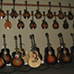 Five Star Dealer - The Mandolin Store - Acoustic Wall