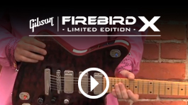 Firebird X in Action