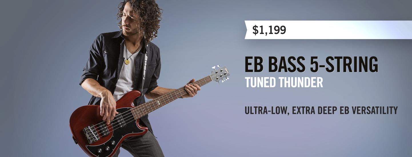 EB Bass 5 String