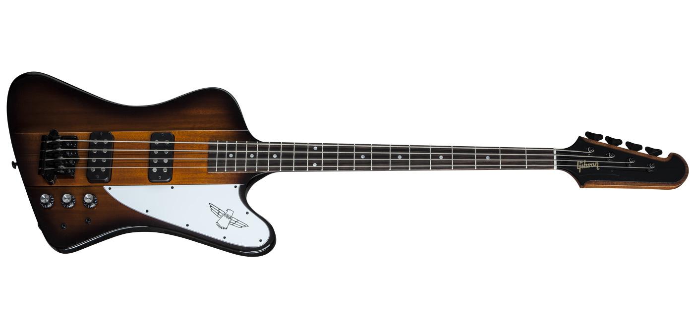 Thunderbird Bass 2015 Input Jack Wiring