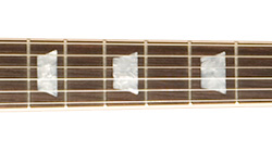 Features Fingerboard - Gibson Custom Shop Alex Lifeson Signature Axcess Les Paul Viceroy Brown