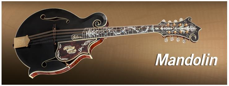 Gibson Custom - Mandolin